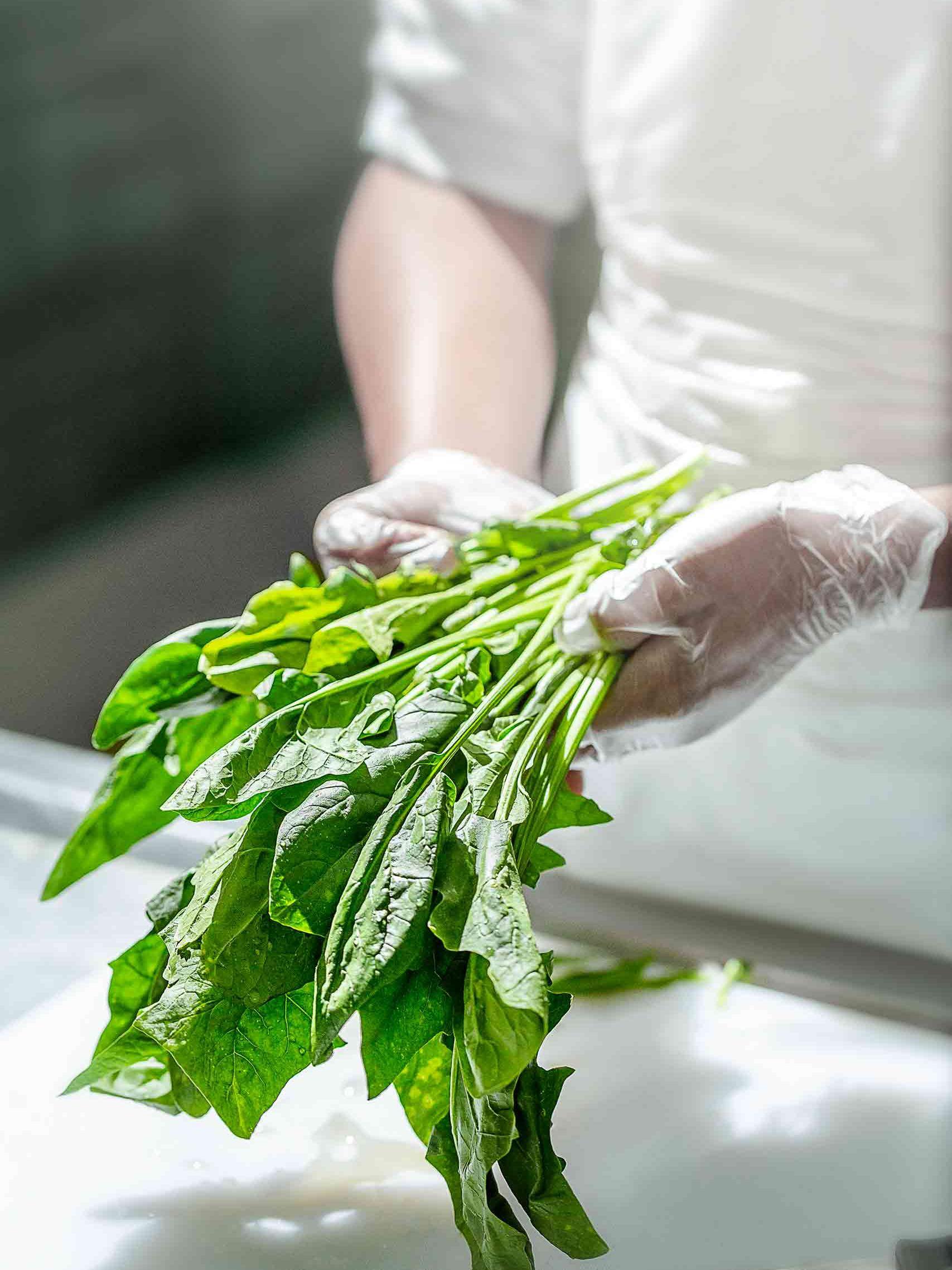 Rejuve Organic Vegetables